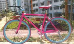 Pink Fixie for Adult / Teen, Rider Height : 163-172cm