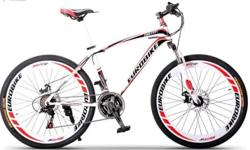 Eurobike Sport MTB 21speeds -dual disc brakes -front