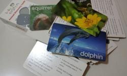 Preloved Animals Flash Cards with explanation in good