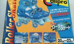 Offer a suitable price and take it Roller Skates For