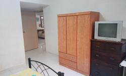 Spacious fully furnished Master Bedroom available for