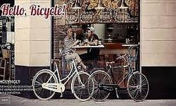 Are you looking urban bicycle, classic bicycle, leisure