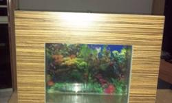 Wall fish tank in excellent condition for the festive
