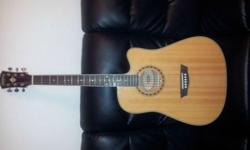 Washburn Semi-Acoustic/Electric Guitar (WD-10CE) with