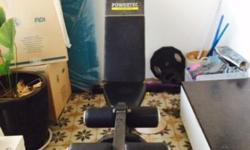 Everlast weight bench and quality weights.