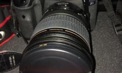 Wts 7d (body only).