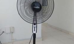 "1. Morries 18"" Stand Fan with Timer - $15 2. Giant 16"""